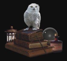 Harry Potter - Hogwarts Kit v1.0 One Piece - Short Sleeve