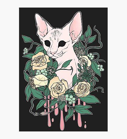 Light Floral Feline Photographic Print