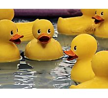 Who Wants A Rubber Ducky? Photographic Print