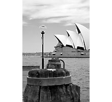 sails of the harbour Photographic Print