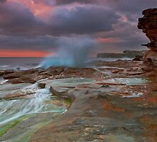 Burst of Colour by Mark  Lucey