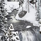 Kepler Cascades in Yellowstone National Park by cavaroc