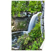 { minnehaha falls- with birch trees } Poster