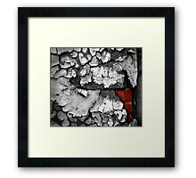 slow decay Framed Print