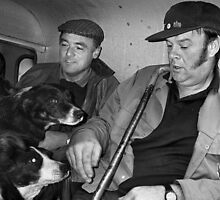 Sheep Gatherers with Dogs, North Wales by Tim Collier