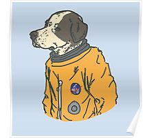 space dog Poster