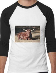 Bull Relaxing Men's Baseball ¾ T-Shirt
