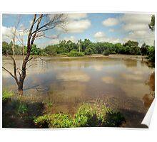 paddock/lake Poster