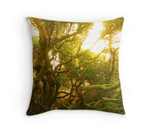 Sunny Continuity Throw Pillow