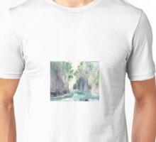 Franklin River, Tasmania, Australia (it's still a beautiful world) Unisex T-Shirt