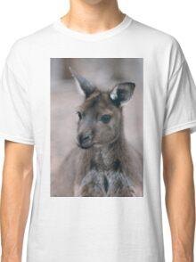 Western Grey Kangaroo Classic T-Shirt