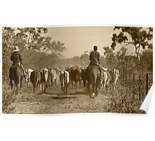 Taking the cows home Poster