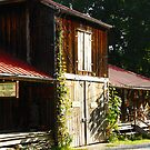 Rabbit Hash Art Gallery & Dept of Tourism aka The Barn by Jeanne Sheridan