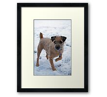 Monty owning the snow Framed Print