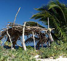 Old beach hut - Sandy Island, nr Carriacou by moor2sea