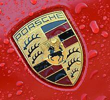 Porsche Crest by rrushton