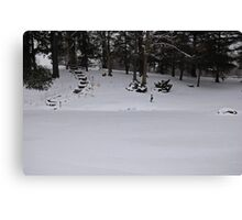 Frosted Wonderland Canvas Print