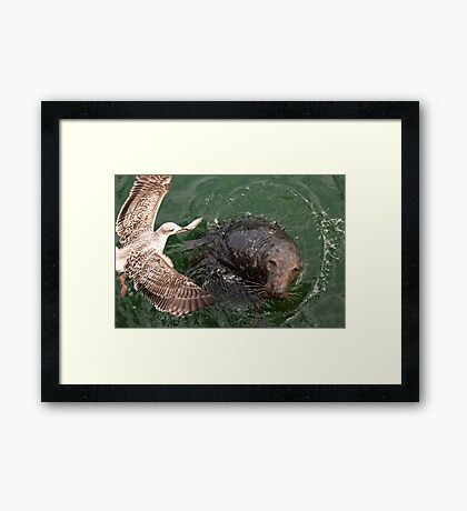 Snatched From the Jaws of Success Framed Print