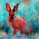 wild rabbit by rosalin