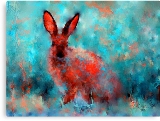wild rabbit by rosalin