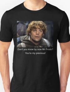 sam and frodo love T-Shirt