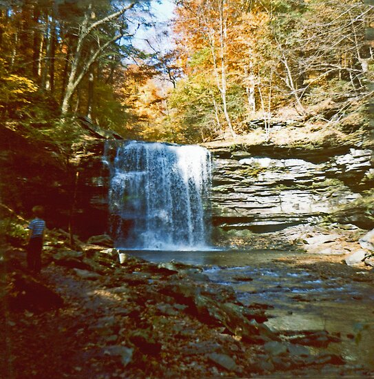 Harrison Wright Falls in Ricketts Glen circa 1979 by Paul Gitto
