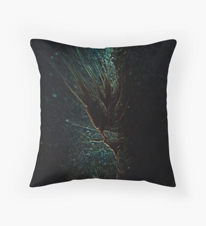 Centre Of The Universe 1 Throw Pillow