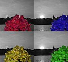 Flowers on the banks of the Danube in Budapest by bwatt
