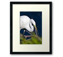 Hunting... Framed Print