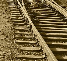 Railroad in Poland by bwatt