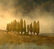 Stormy Tuscany by Marie Luise  Strohmenger