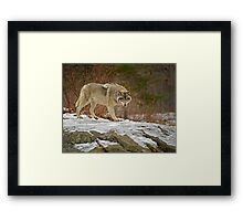 With Confidence Framed Print