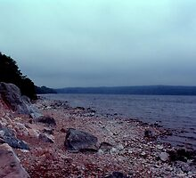 Shore of Loch Ness by Brisinga