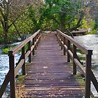Bridge - Krka National Park, Croatia by bwatt