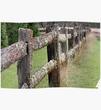 Textured Fence Poster