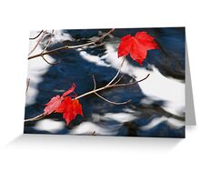 Maple Goodies Greeting Card