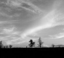 Wide open plains by Karen  Rubeiz