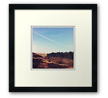 Tree-felling towards Belmont  Framed Print
