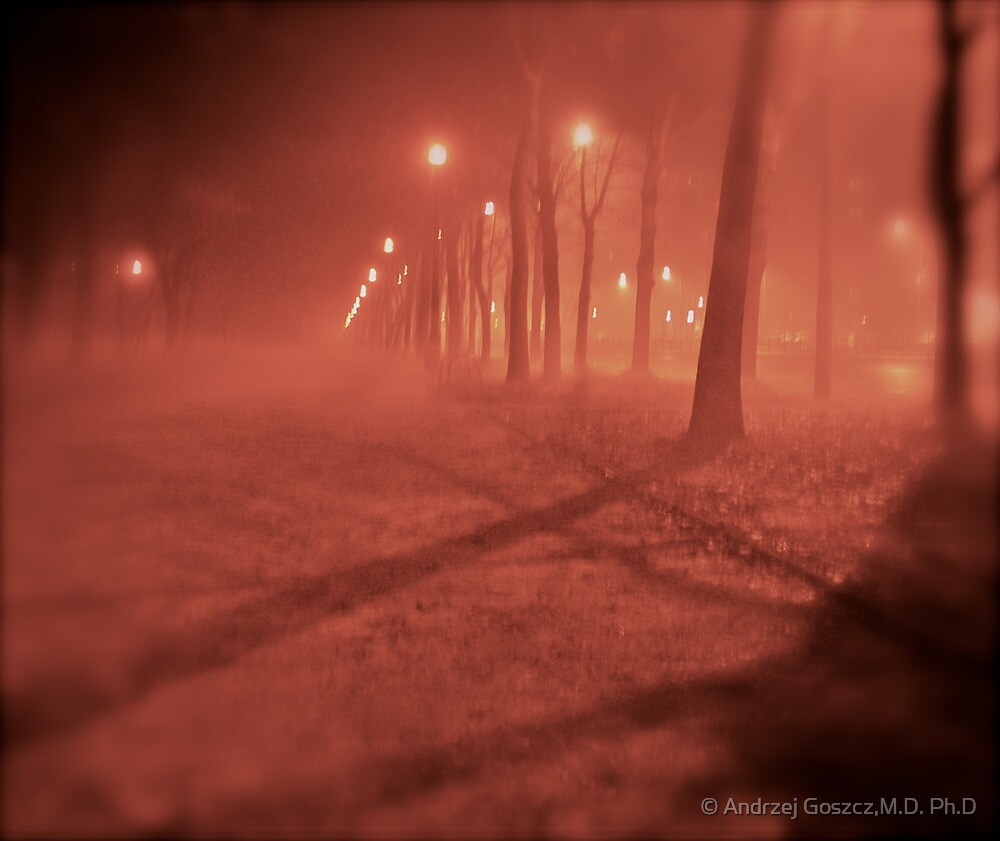 Fairy - tale  &  foggy  My !!!  Kraków . (Poland)   by   Brown Sugar. F*Favorites: 3 Views: 363 . Thx dear friend !. by © Andrzej Goszcz,M.D. Ph.D