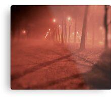Fairy - tale  &  foggy  My !!!  Kraków . (Poland)   by   Brown Sugar. F*Favorites: 3 Views: 363 . Thx dear friend !. Metal Print