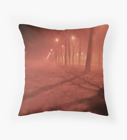 Fairy - tale  &  foggy  My !!!  Kraków . (Poland)   by   Brown Sugar. F*Favorites: 3 Views: 363 . Thx dear friend !. Throw Pillow