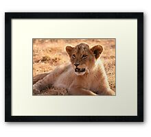 Mighty King Framed Print