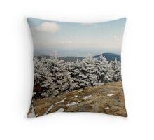 Slide Mountain 2 Throw Pillow