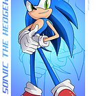 Sonic the Hedgehog - Sonic Adventure 2 Battle by Tom Skender