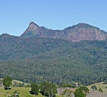 Mt Warning by Margaret  Hyde
