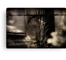 Through The Fence Line Canvas Print