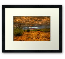 Another Log Enjoys A Sunset Framed Print