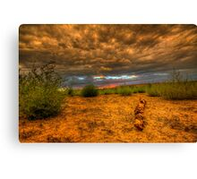 Another Log Enjoys A Sunset Canvas Print