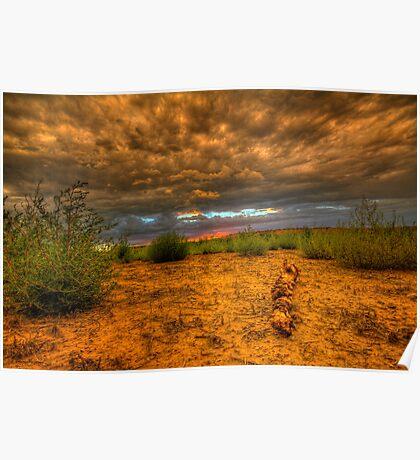 Another Log Enjoys A Sunset Poster