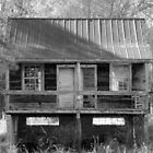 Old House InThe Woods by Cynthia48